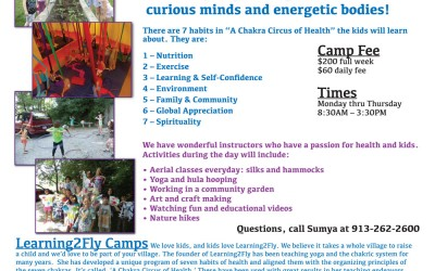 Summer Break Camp – A Chakra Circus of Health