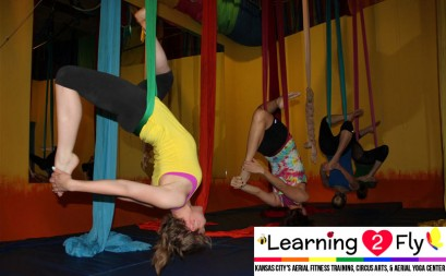 New Intro to Aerial Silks 7 Week Session Starts July 13, 2015!