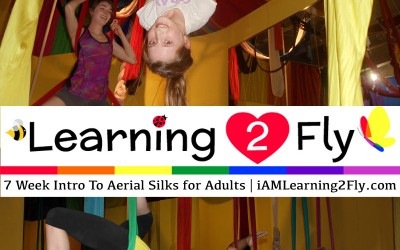 "TWO 7 week ""Intro to Aerial"" Classes For Both Kids and Adults"